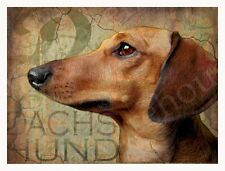 DACHSHUND  Dog Print Poster -Doxie Weiner Dog -  Vintage Series Wendy Presseisen