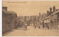 Amesbury, Salisbury Street Postcard, B364
