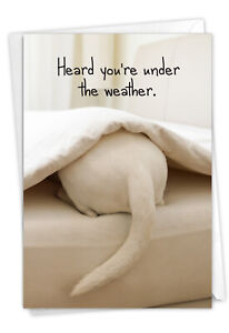 1 Funny Get Well Card with Envelope - Tattle Tails Bed C9279EGWG