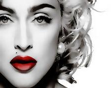 Madonna Pop Art #114 Canvas 16 x 20   #3038