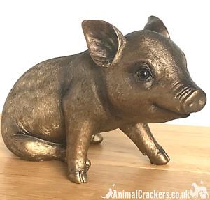 Large 24cm quality Bronze effect Piggy Bank ornament decoration Pig lover gift