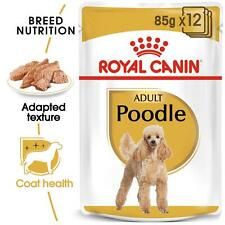 Royal Canin Poodle Adult Wet Dog Food, Maintains Muscle Tone, For 10m 12 x 85g