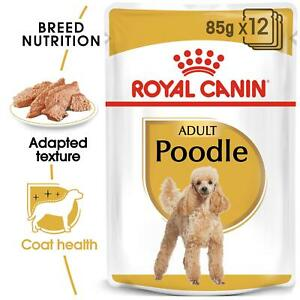 Royal Canin Poodle Adult Wet Dog Food, Maintains Muscle Tone, For 10m+, 12 x 85g