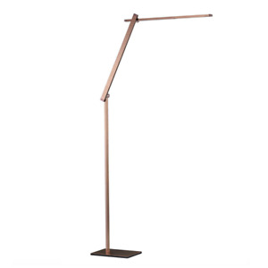 NEW Dexter LED Floor Lamp   Bronze