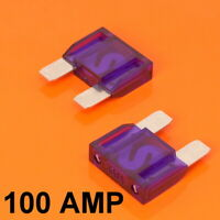 High Quality 2 x 100 Amp Maxi Blade Fuse Purple 100A Car Van Bike Large Fuses