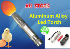 AU POST Egg Hatch Quality Check Designhead Q5 Cree Led 18650 Rechargeable Torch