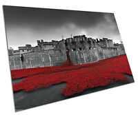 Poster print Tower of London Remembers red Field of Poppies wall Poster A1