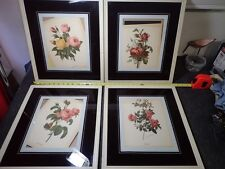 lot of 5 vintage Roses Flower Lithographs in white wood frames