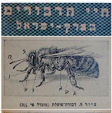 1943 Palestine HEBREW BOOK GUIDE Israel BEES - BEEKEEPING - BEEHIVES -APICULTURE