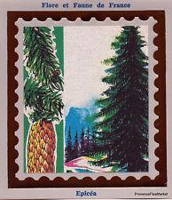 Trees Spruce Yt2387 France FDC Envelope Letter Premier Day CEF