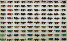 Wholesale Lots 40pcs double Heart Change Color Mood Ring Alloy Adjustable Rings