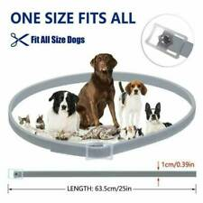 Adjustable Mini Anti Insect Flea and Tick Collar Protection NEW For Pet Dog Cat