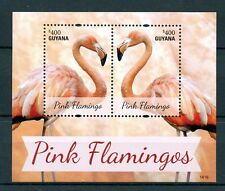 Guyana 2014 MNH Pink Flamingos 2v S/S Birds Flamingo Flamingoes Stamps