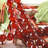 """Natural RARE Red Ruby Round Loose Beads Gemstone 15""""AAA"""