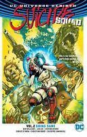 Suicide Squad Vol. 2: Going Sane [Rebirth] [DC Universe Rebirth: Suicide Squad]
