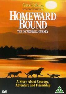 Homeward Bound: The Incredible Journey DVD R4