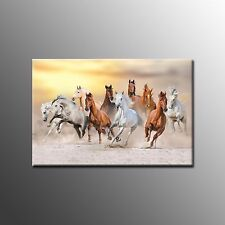 FRAMED Canvas Photo Printing Picture Horse Wall Art Painting  For Living Room
