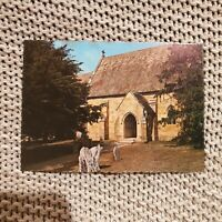 St. John the Baptist Church, Buckland, Tasmania - Vintage Postcard