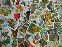 FRUIT Topical collection 75 different (+1 SS) Mixed condition