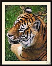Tiger 2005, Cross Stitch Kit