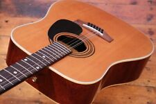 Very Rare Thompson 12 String Acoustic 1981 (Made by Eko) + Near Mint + Pro Setup