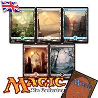 Magic the Gathering MTG Extended Full Art Basic Land Amonkhet Playsets NM/M