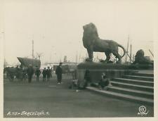 KK Bergen, Espagne, Barcelona, Statue de lion, ca.1925, Vintage silver print vin