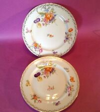 Rosenthal Selb Bavaria - 2 Floral Dinner Plates With Gilded Accents - Germany