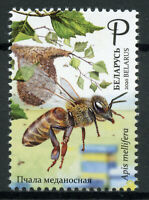 Belarus Bees Stamps 2020 MNH Honey Bee Beekeeping Insects 1v Set