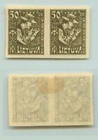 Lithuania 🇱🇹 1921  SC 102a  mint  imperf pair . d9506