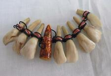 Antique Vintage Tribal Native American Bound Horse Tooth Teeth & Bead Panel
