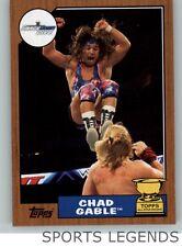 2017 WWE Heritage bronze #45 Chad Gable