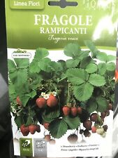 Semi di Fragole Rampicanti in Busta termosaldata