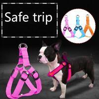 LED Flashing Light Leash Nylon Rope Belt Collar Vest Comfort Pet Dog Cat Harness