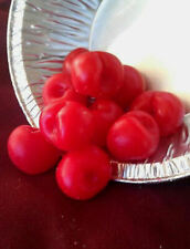 Wax Bing Cherries (scented), Fake Food, Props, Fake Fruit, 8 oz