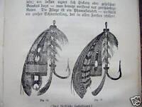 Der praktische Angler 1903 Anleitung Angelfischerei
