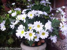 Artificial White Daisy Bunch, For Garden Pots, Planters, Home, Silk Flower Bush