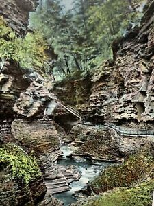 Narrow Path Watkins Glen State Park New York NY Leighton Germany Postcard Old PC