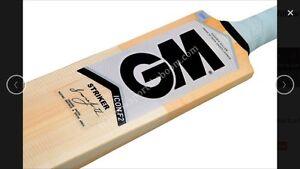 GM Icon Striker Kashmir Willow Cricket Bat (Indoor), AU Stock Free Ship & Extras