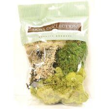"""Floral Moss - Variety Pack 6.5 x 10.5 x 2 """" Da Qg1390 Miniature Fairy Garden"""