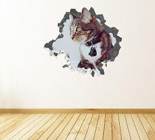 Animal Cat Wonderful Custom Wall Decals 3D Wall Stickers Art - JS399