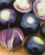 Purple Physalis Seeds Exotic fruit Ukraine 0.2 g