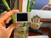 GoPro Hero4 Silver-Black Hero3 + Hero2 WhiteLCD GREY BACPAC Camera Monitor Works