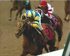 STREET SENSE 8X10 PHOTO HORSE RACING PICTURE JOCKEY