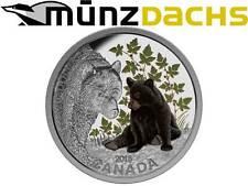 20 $ Dollaro Bambino Animali Orso Nero Bear Canada 2015 1 oncia d'argento PP