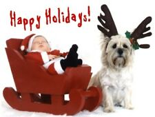 Pet Christmas Cards:Dog Cairn Terrier w/ Baby #2 Xmas