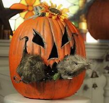 Long-Nosed Hairy Rat Pumpkin Poke-Ins Rodent Head & Tail Halloween Decor (2-PCS)