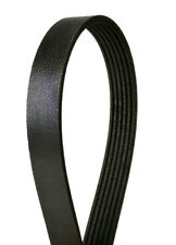 Serpentine Belt fits 1987 Pontiac Grand Am  CONTINENTAL ELITE