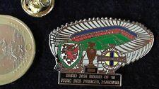Em 2016 Matchday Pin Badge Wales Irland Irish Parc de Prince Viertelfinale Frank