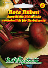 red turnip, Egyptian Flat Round, Seed, Beta vulgaris, Vegetables, Chrestensen,